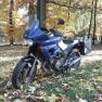 Yamaha  TDM avatar
